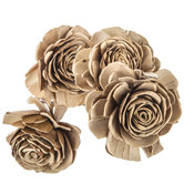Natural Sola Beauty Rose Stems
